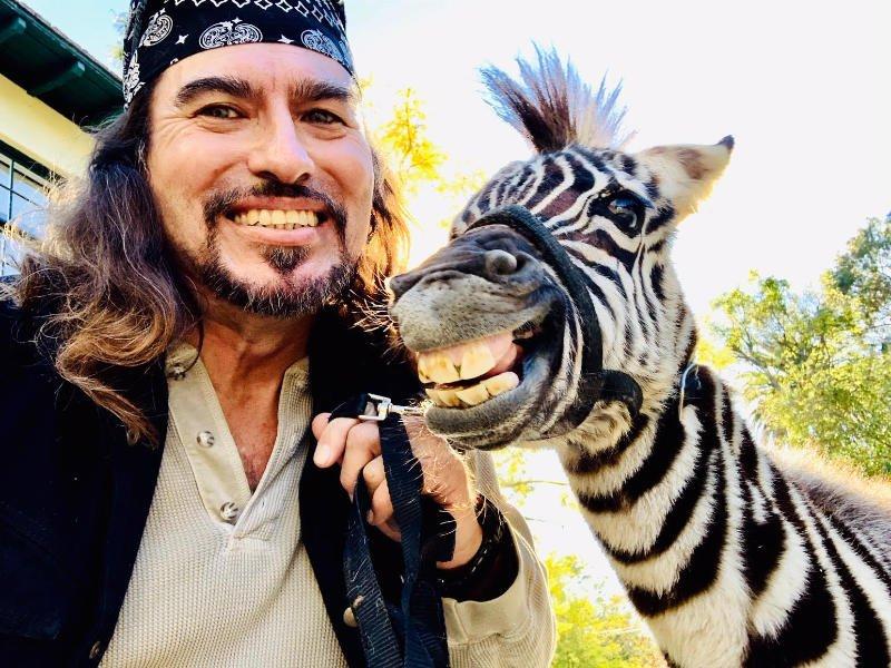 Zebra Smiling