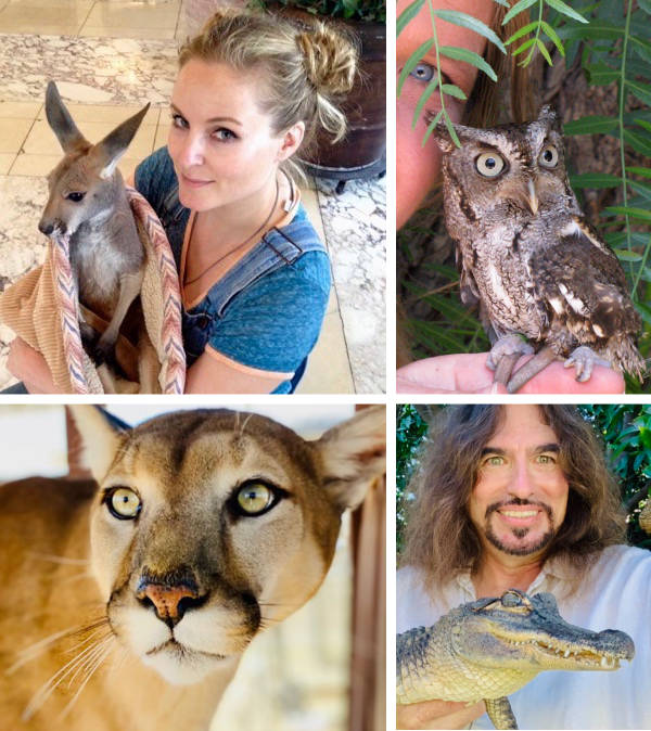 Exotic Animal Party for Kids